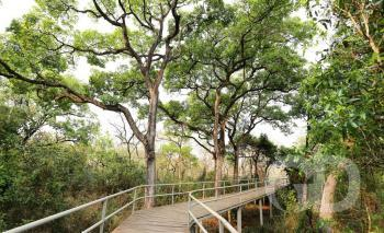 Parque Flor do Ipê VG