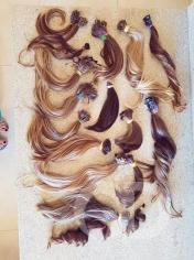 projeto força na peruca