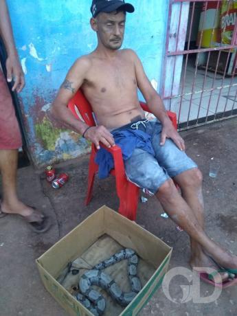 Homem é preso em VG com cobra