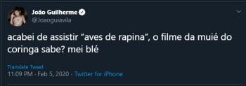 joao guilherme, ator, arlequina