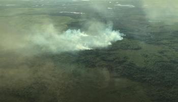 incendio pantanal